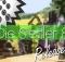 siedler8